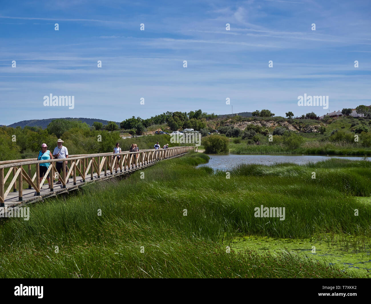 Visitors walking on the wooden Footpath across the Salt water lagoon at Fuente de Piedra Nature Reserve, watching the Wading Birds. Spain Stock Photo
