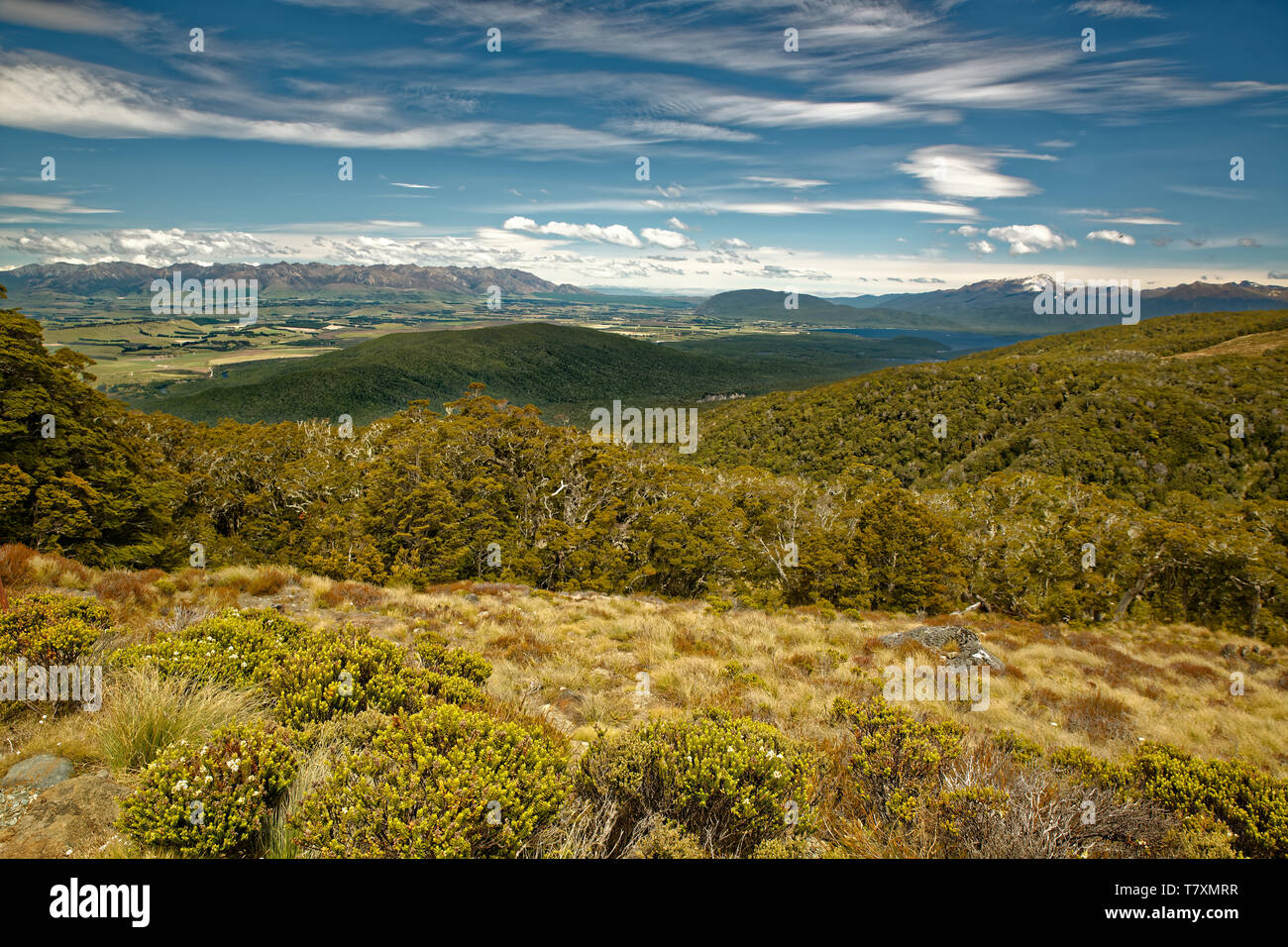 Landscape New Zealand - National Park Fiordland, South Island, beautiful mountain and fiord sceneries. Stock Photo