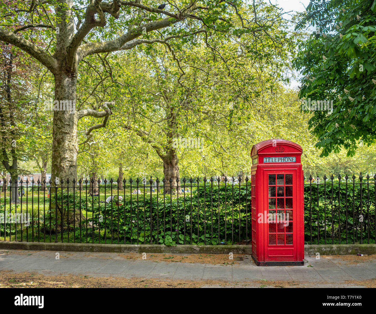 Red telephone box at Brunswick Square Gardens, Camden, London. Stock Photo