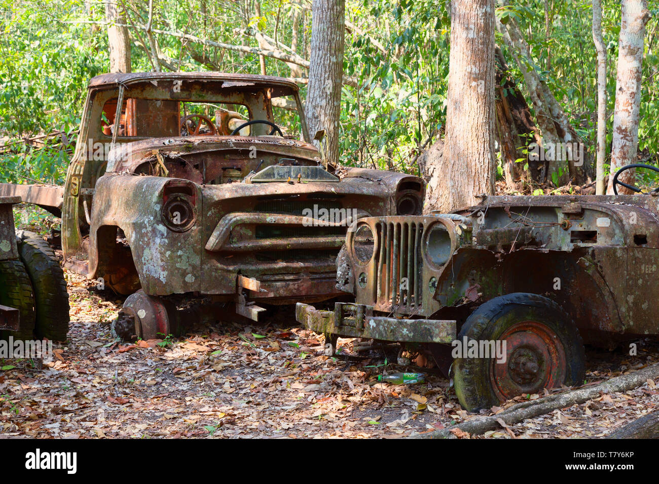 Old cars rusting and dumped in the forest, Guatemala Central America. Concept - Broken down, Pollution, Stock Photo