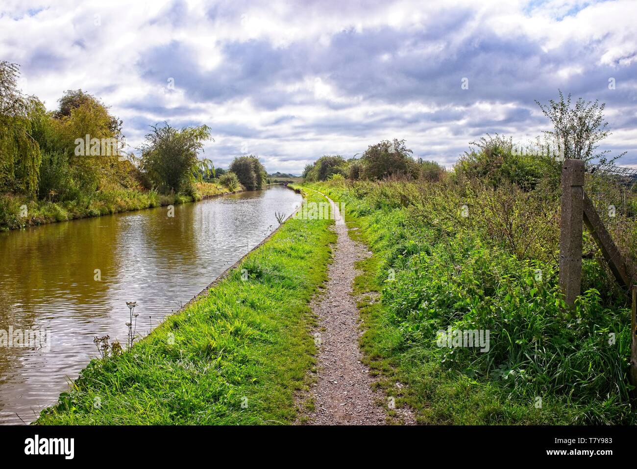 Trent and Mersey canal with towpath in Elworth near Sandbach Cheshire UK - Stock Image