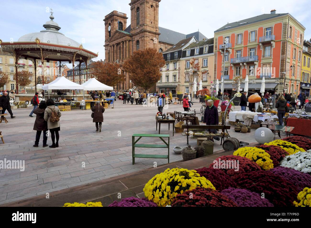 France, Territoire de Belfort, Belfort, Place d Armes, in front of the town hall, flowering, chrysanthemums in november, music kiosk, Saint Christophe cathedral dated 18th century - Stock Image