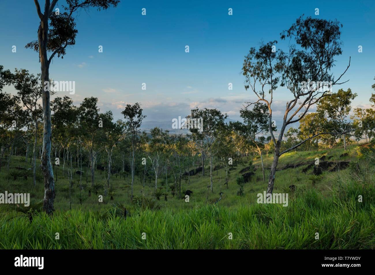Papua-New-Guinea, Papua bay, National Capital District, Port Moresby town, Varirata National Park Stock Photo