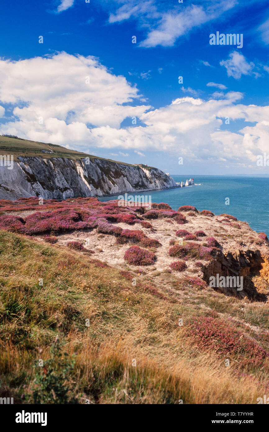 The Needles, a row of three distinctive stacks of chalk that rise about 30m from the sea off the western side of the Isle of Wight, UK Stock Photo