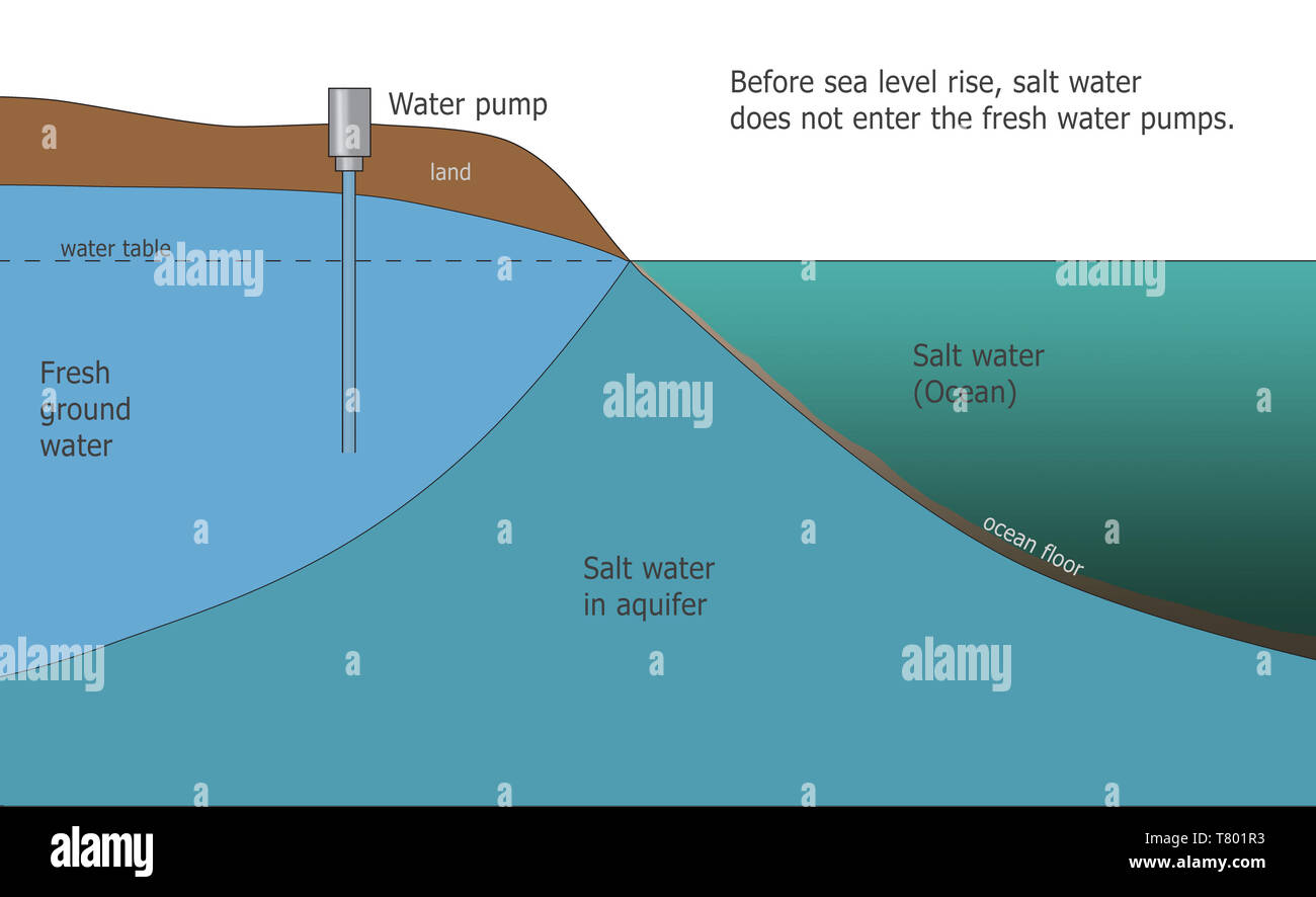 Salt Water Intrusion, Climate Change, Illustration - Stock Image