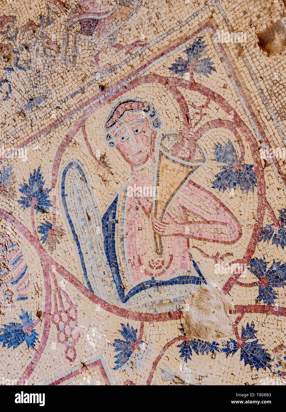 Mosaic floor in Umm ar-Rasas, UNESCO World Heritage Site, Amman Governorate, Jordan, Middle East Stock Photo