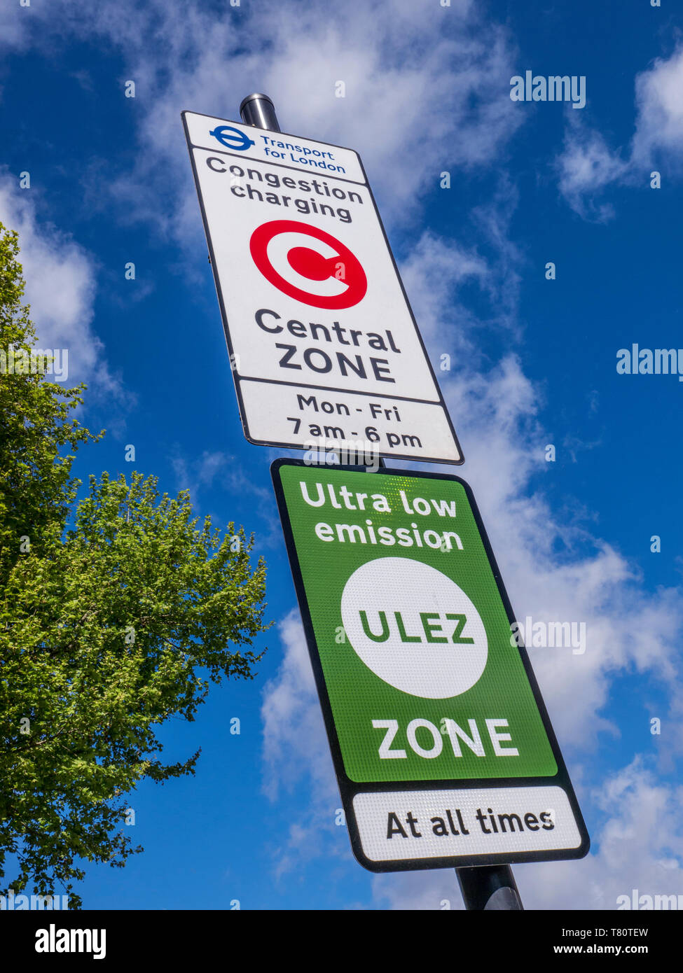 'ULEZ' TFL congestion charging central zone sign with 'ULEZ' ultra low emission zone sign against blue sky with tree in fresh green leaf London SE11 - Stock Image