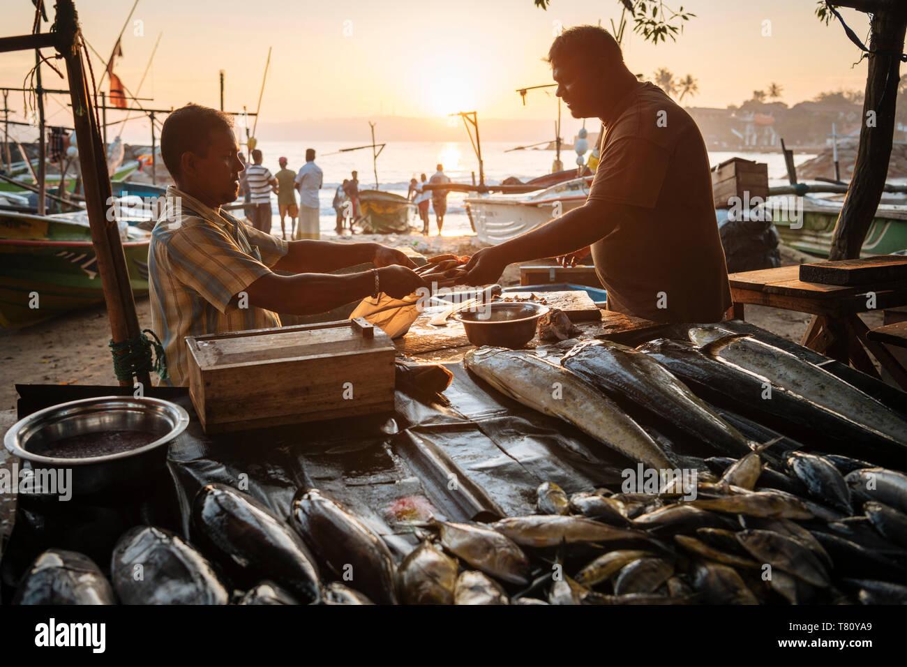 Fish market at dawn, Galle, South Coast, Sri Lanka, Asia Stock Photo