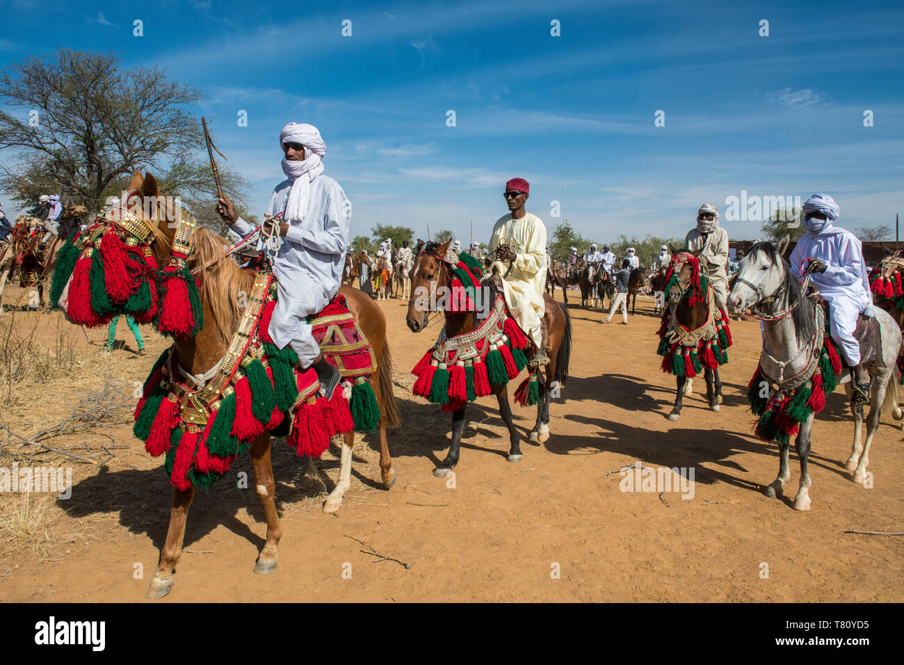 Colourful horse and riders at a Tribal festival, Sahel, Chad, Africa - Stock Image