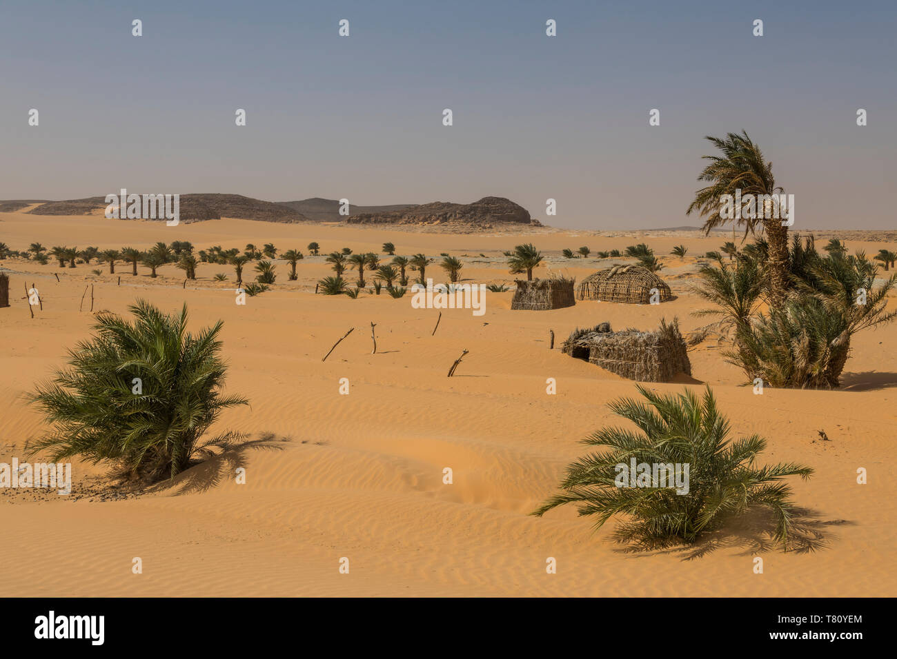 Little village in the desert between Ounianga Kebir and Faya, northern Chad, Africa - Stock Image