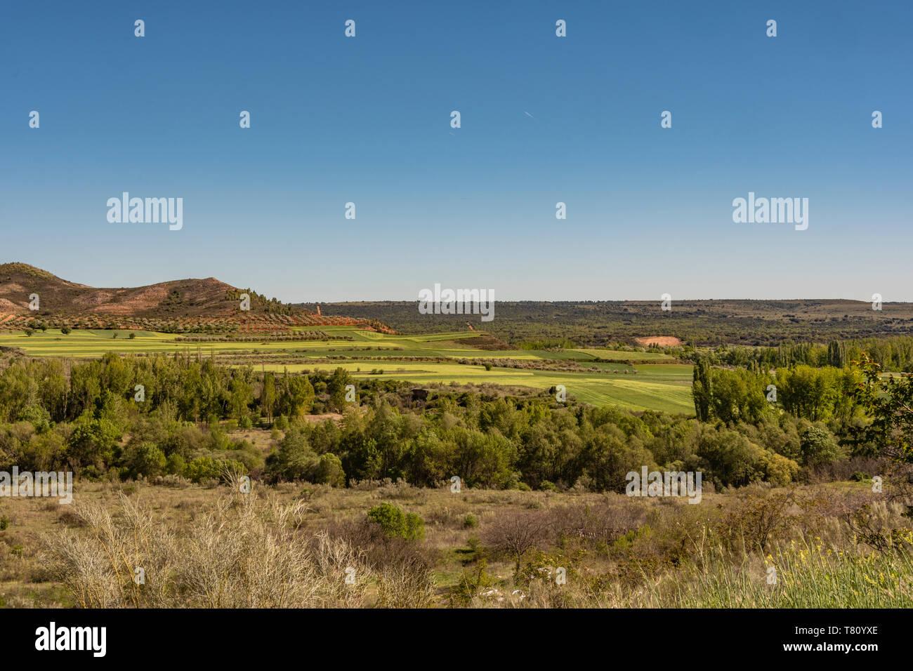 prairies and fields planted in the sierra de guadarrama. madrid Spain. Stock Photo