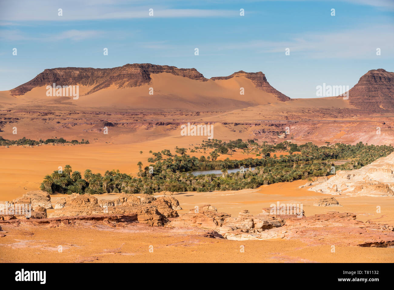 View over a salt water lake surrounded by the desert, Northern Chad, Africa - Stock Image
