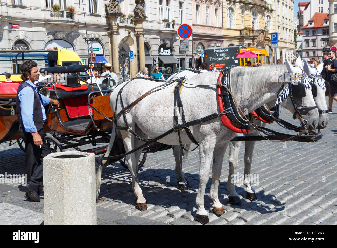 PRAGUE - CZECH REPUBLIC, AUGUST 14 : Two grey horses hitching up and their coachman, August 14, 2017 - Stock Image