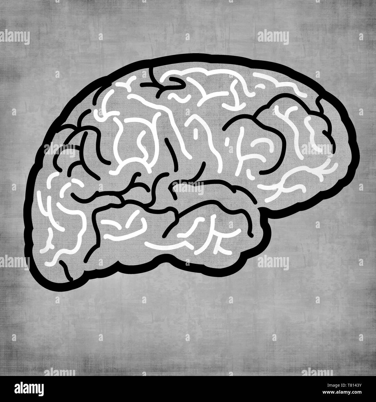 icon of brain - Stock Image