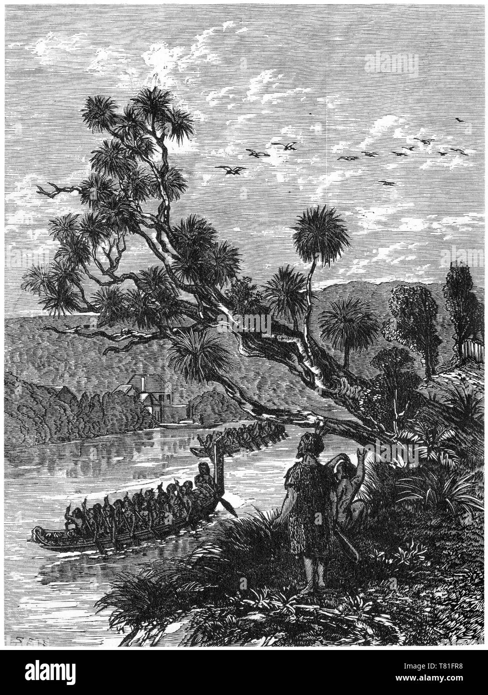 Engraving of a Maori war canoe paddling up a river in colonial New Zealand - Stock Image