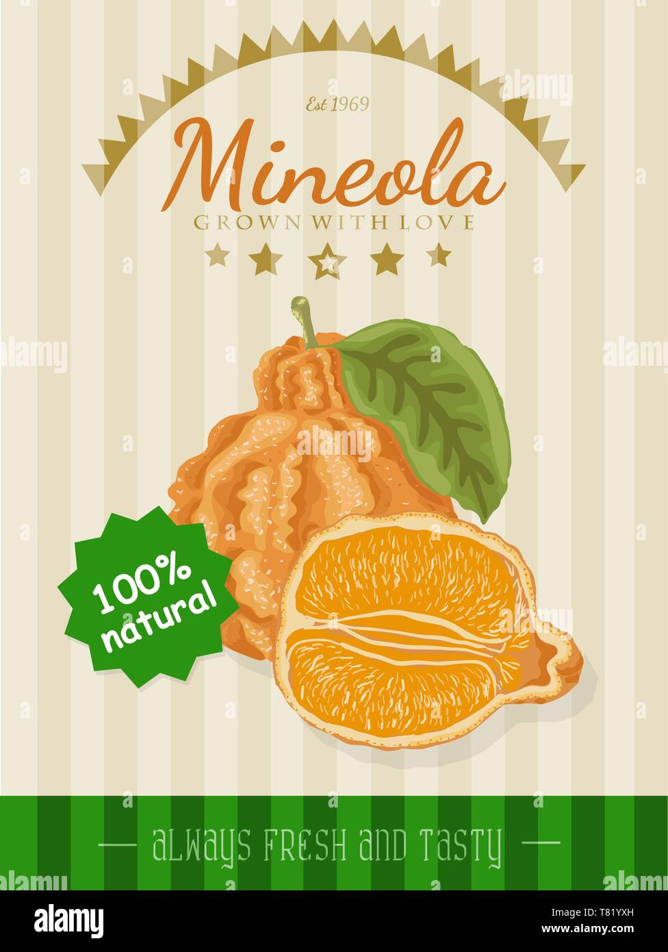 Vector poster with a mineola. Vector illustration for your design - Stock Image