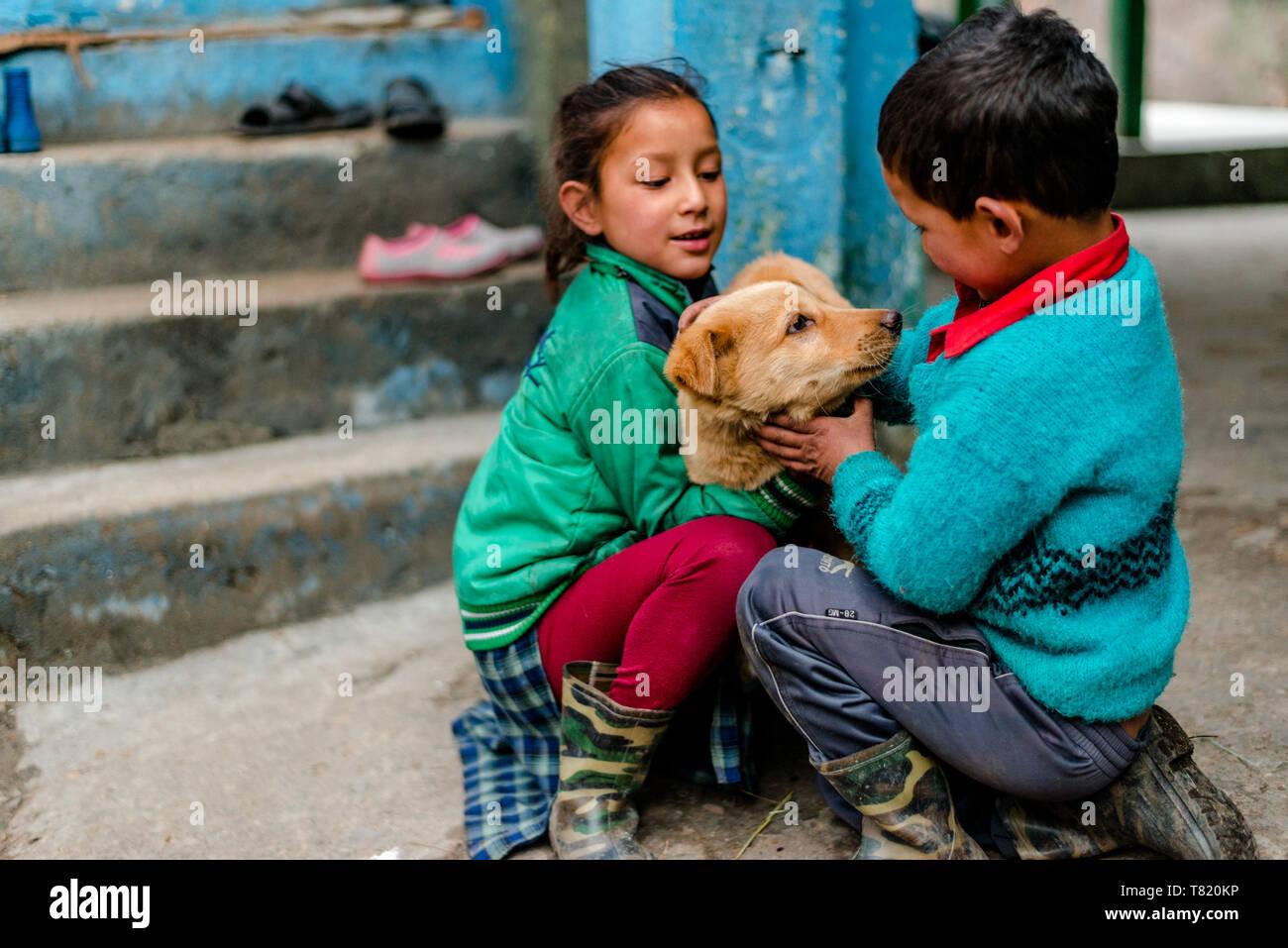 Kullu, Himachal Pradesh, India - February 04, 2019 : Indian dog with kids in Himalaya Mountains, Himachal Pradesh, India - Stock Image