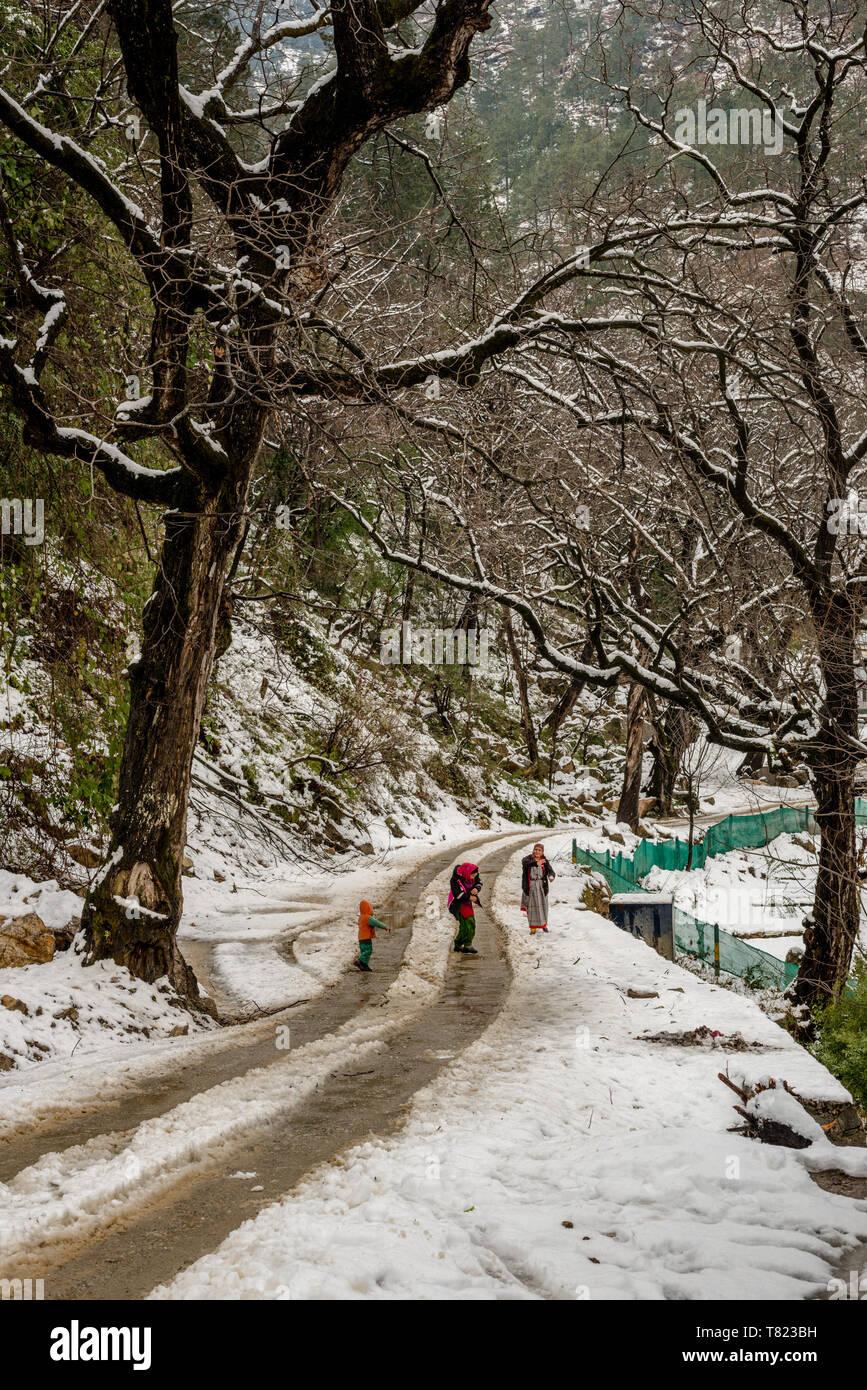 Kullu, Himachal Pradesh, India - Feburuary 08, 2019 : Women playing with snow in mountains - Women in Traditional Himachali Dress - India - Stock Image