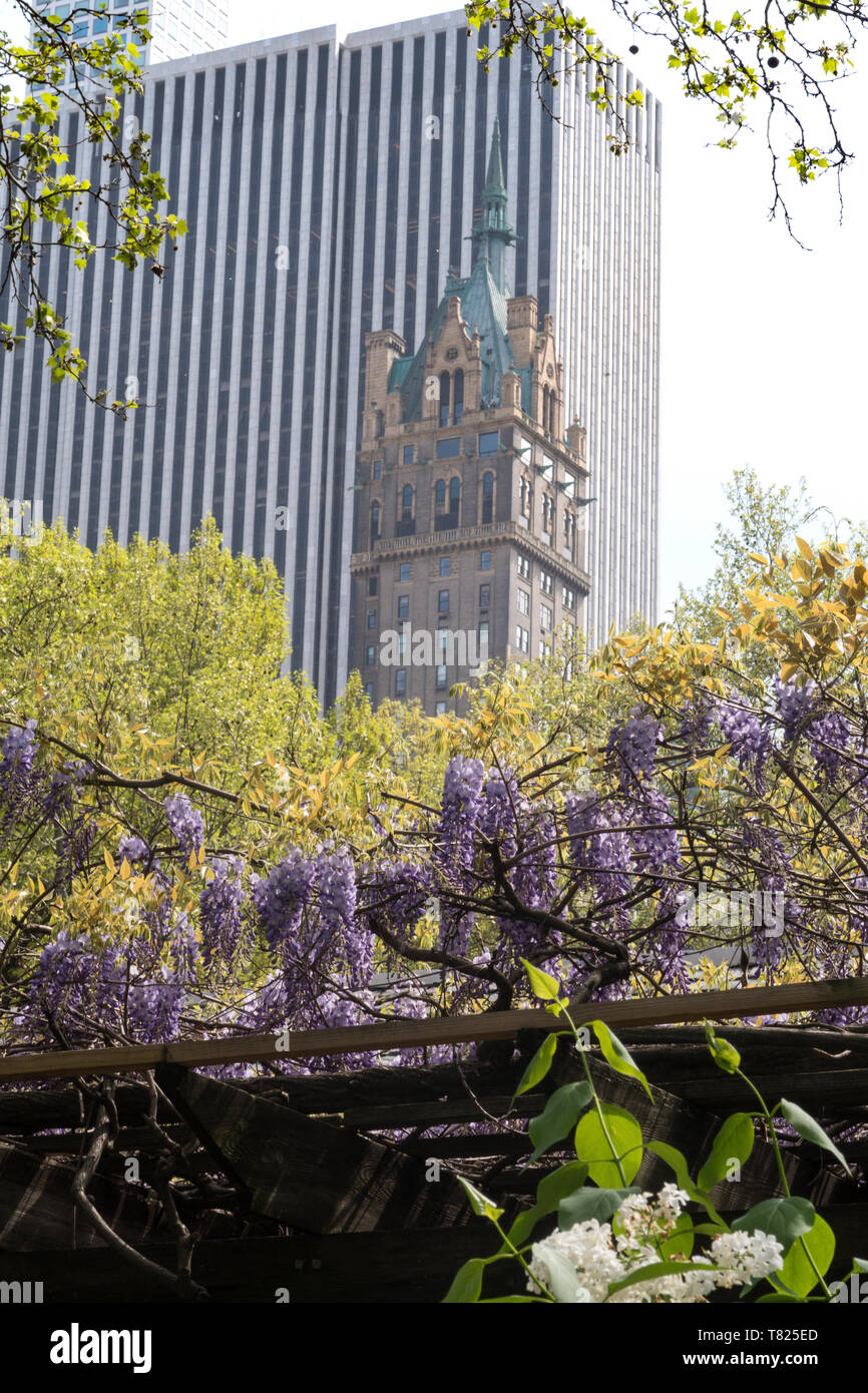 Sherry-Netherland Hotel  and The General Motors Building on Fifth Avenue as seen from the Zoo in Central Park,  NYC Stock Photo