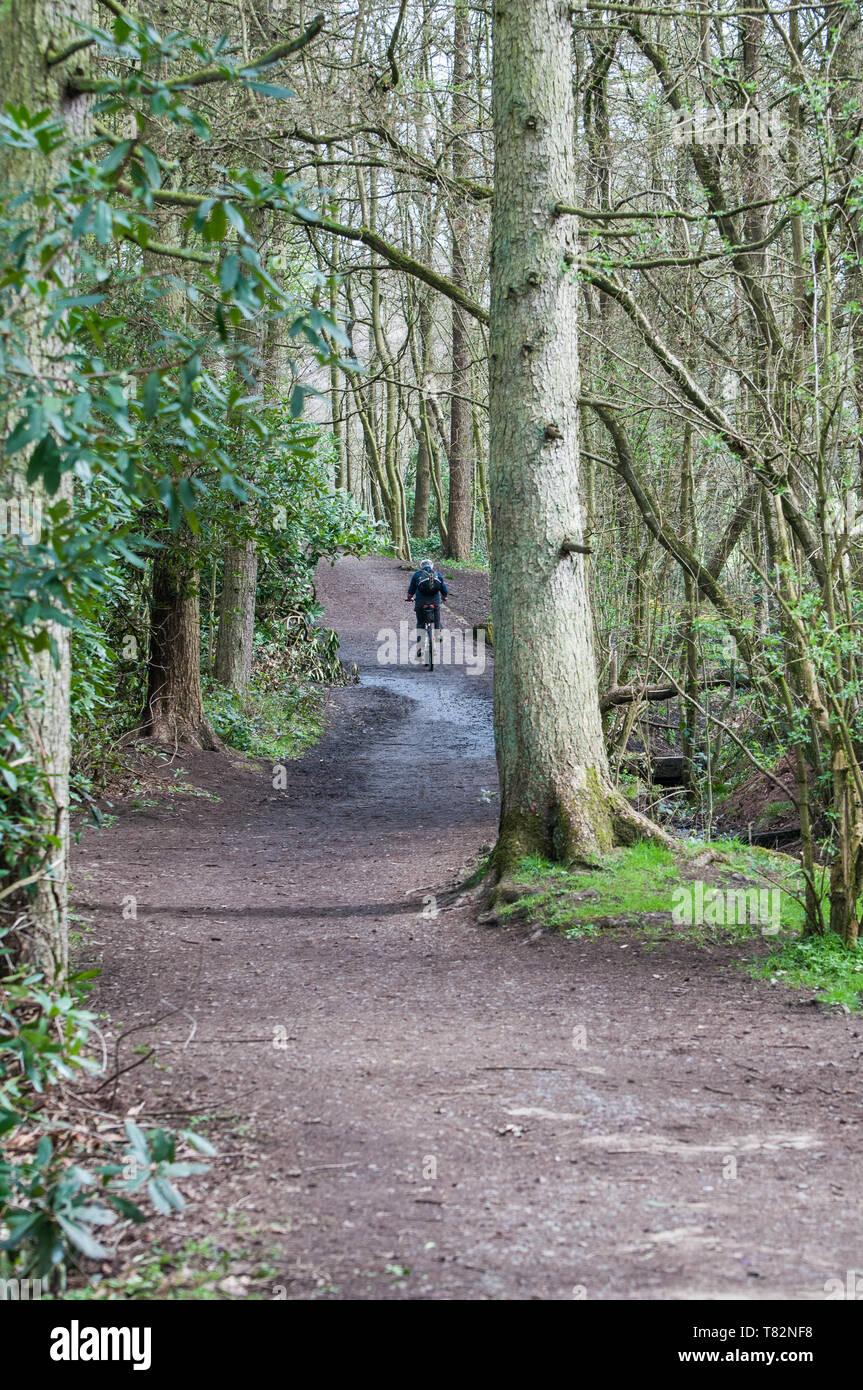 Cuerden Valley Park, Chorley, Lancashire, UK - Stock Image