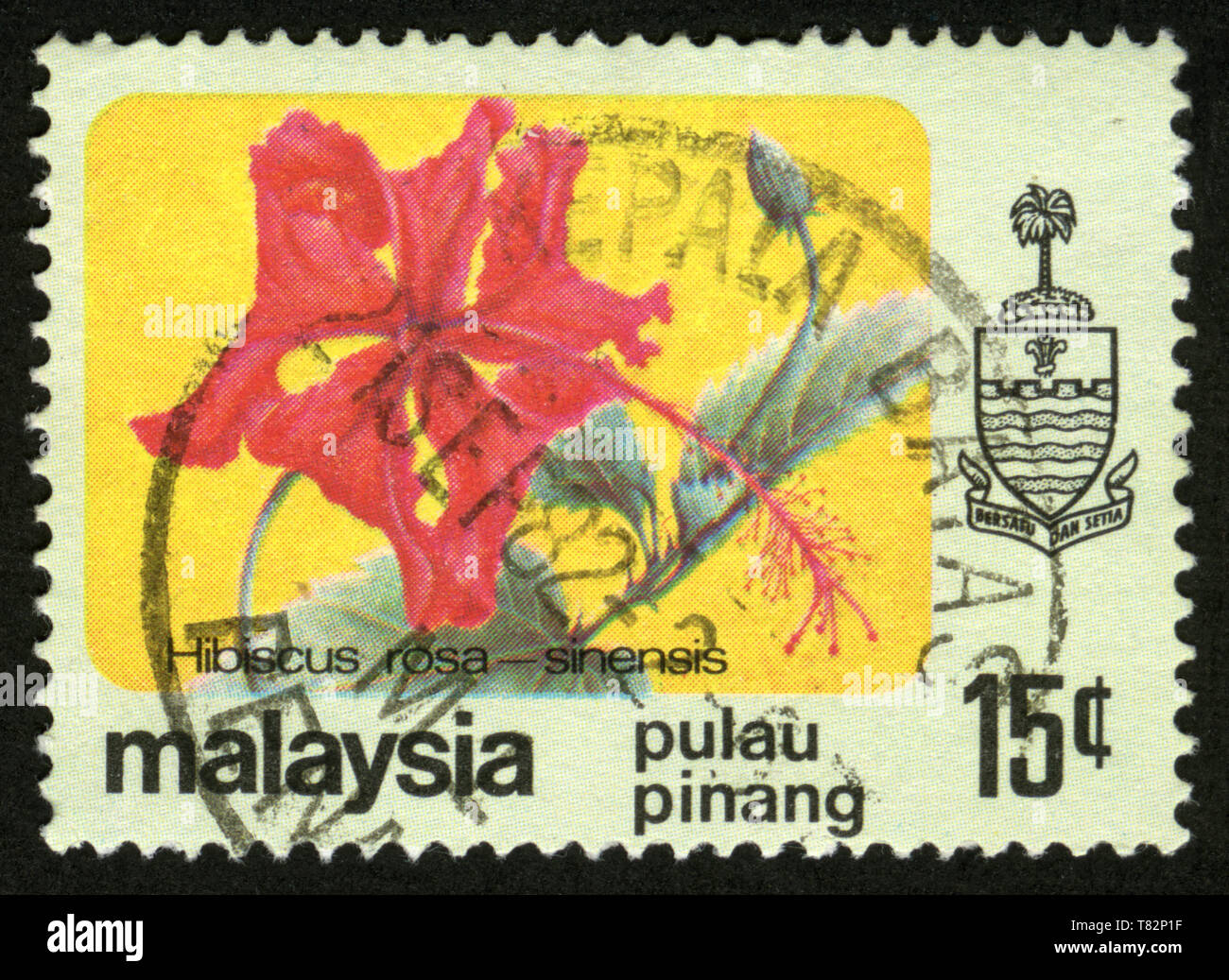 Stamp print in Malaysia,flowers,Hibiscus rosa-sinensis Stock Photo