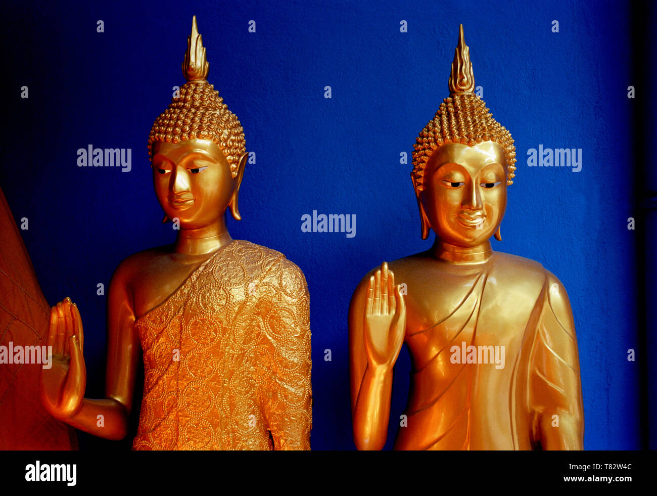 Buddha statues in Bamrung Muang Road in Bangkok in Thailand in Southeast Asia Far East. Ethereal Meditation Mindfulness Spirituality Gold The Stock Photo
