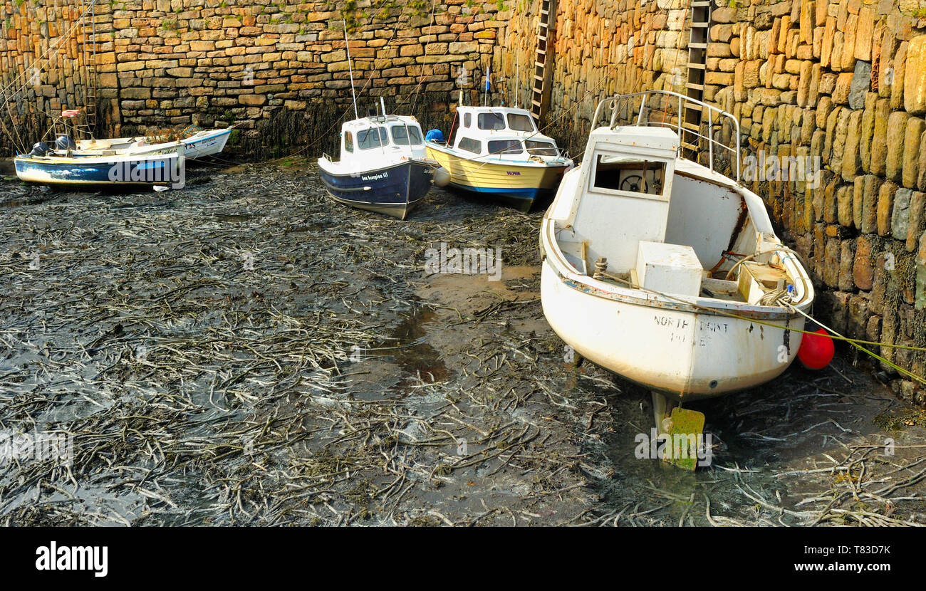 Boats and fishing vessels berthed in Crail Harbour, Fife, Scotland at low tide Stock Photo