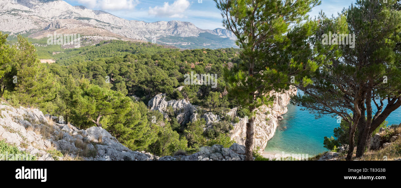 Panorama of calm blue sea with pine tree forest and mountain above in Croatia - Stock Image