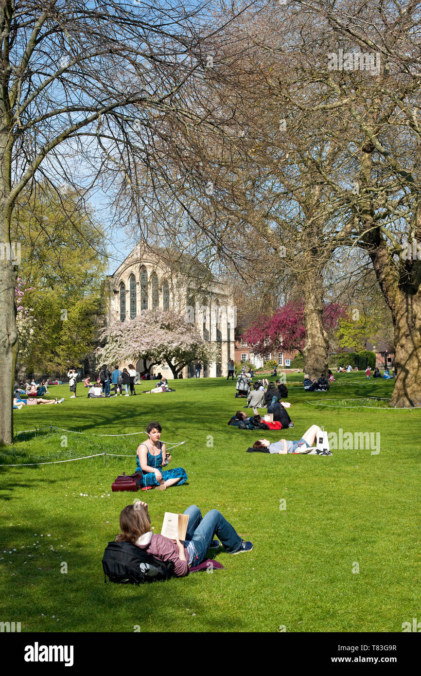 People reading and relaxing in the spring sunshine Deans Park York North Yorkshire England UK United Kingdom GB Great Britain Stock Photo