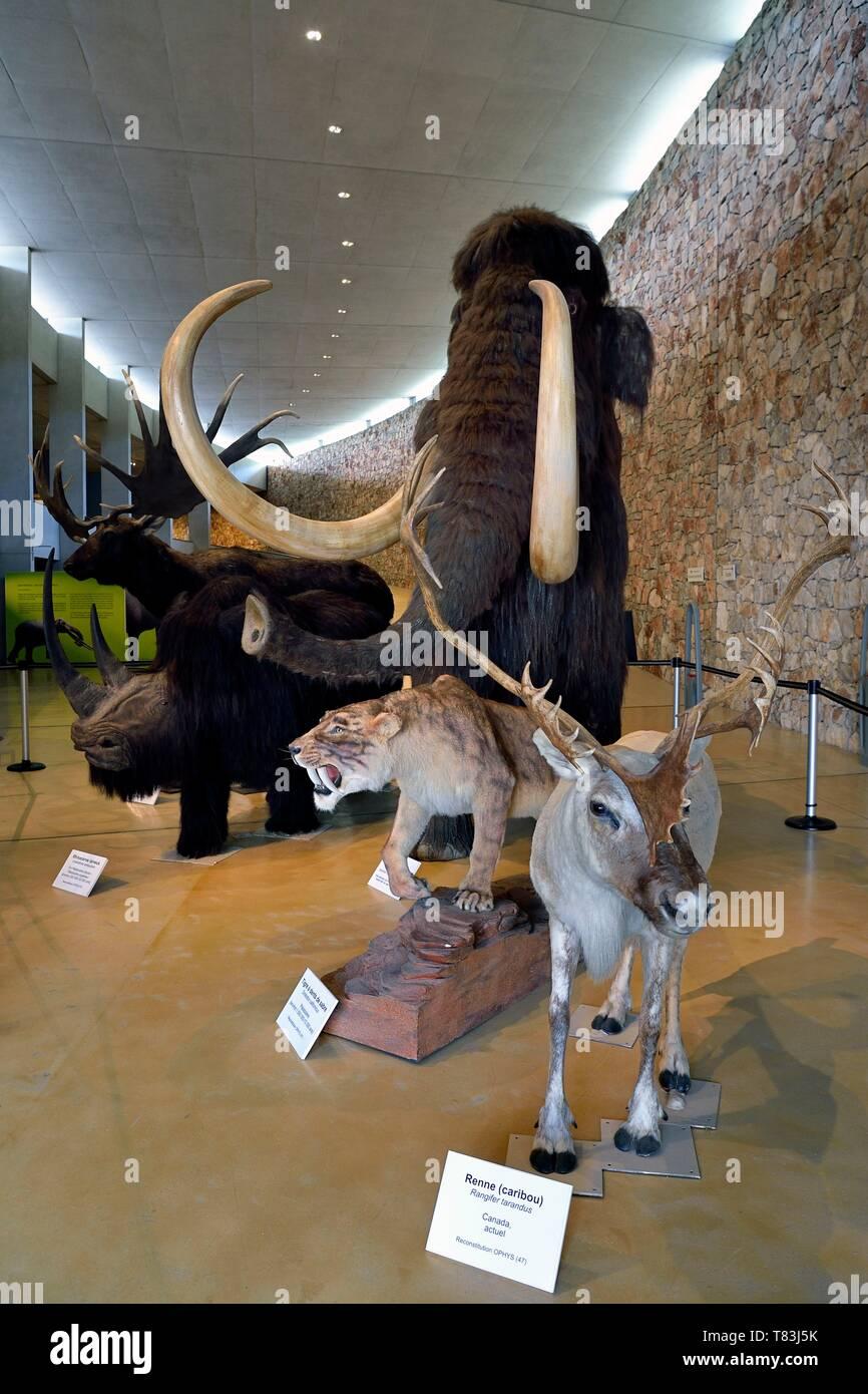 France, Alpes de Haute Provence, Parc Naturel Regional du Verdon, Quinson, Museum of the Gorges du Verdon Prehistory designed by architect Norman Foster - Stock Image