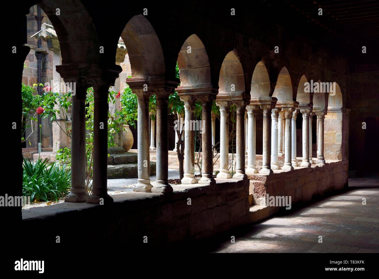France, Var, Frejus, the St. Leonce cathedral (16th century), 12th century canonical cloister - Stock Image