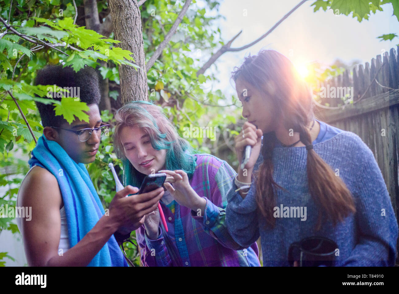 Three male and female teenagers in garden looking at smartphone - Stock Image
