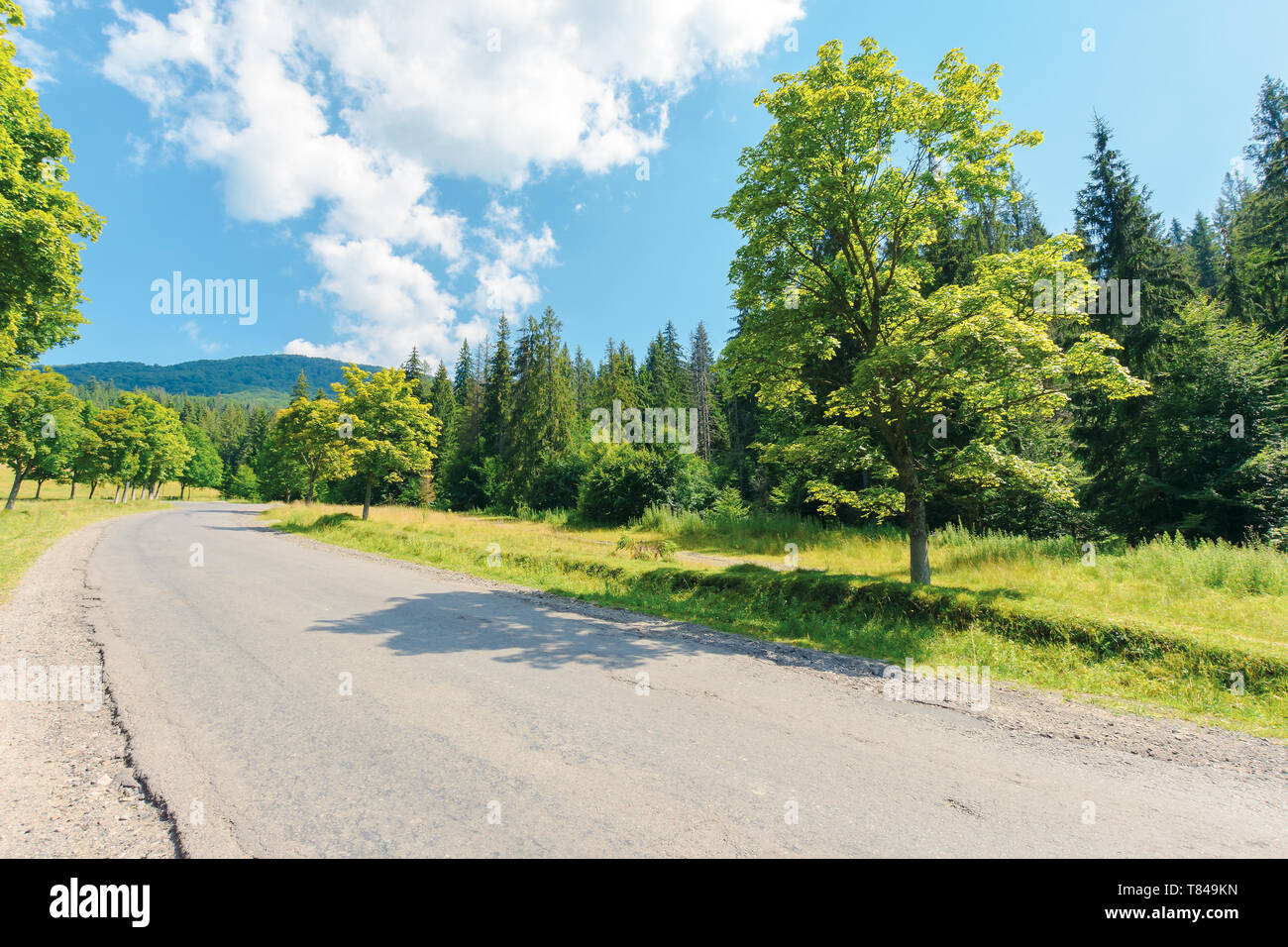 old country road in to the mountains. nature scenery with trees along the way. sunny summer landscape with clouds on a blue sky - Stock Image