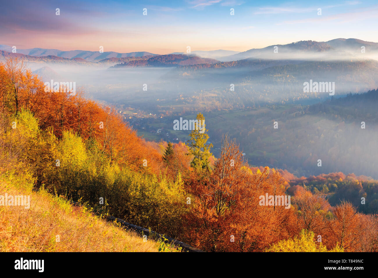 foggy autumn scenery in mountains at sunrise. red and yellow foliage on the trees. hazy weather in the valley - Stock Image