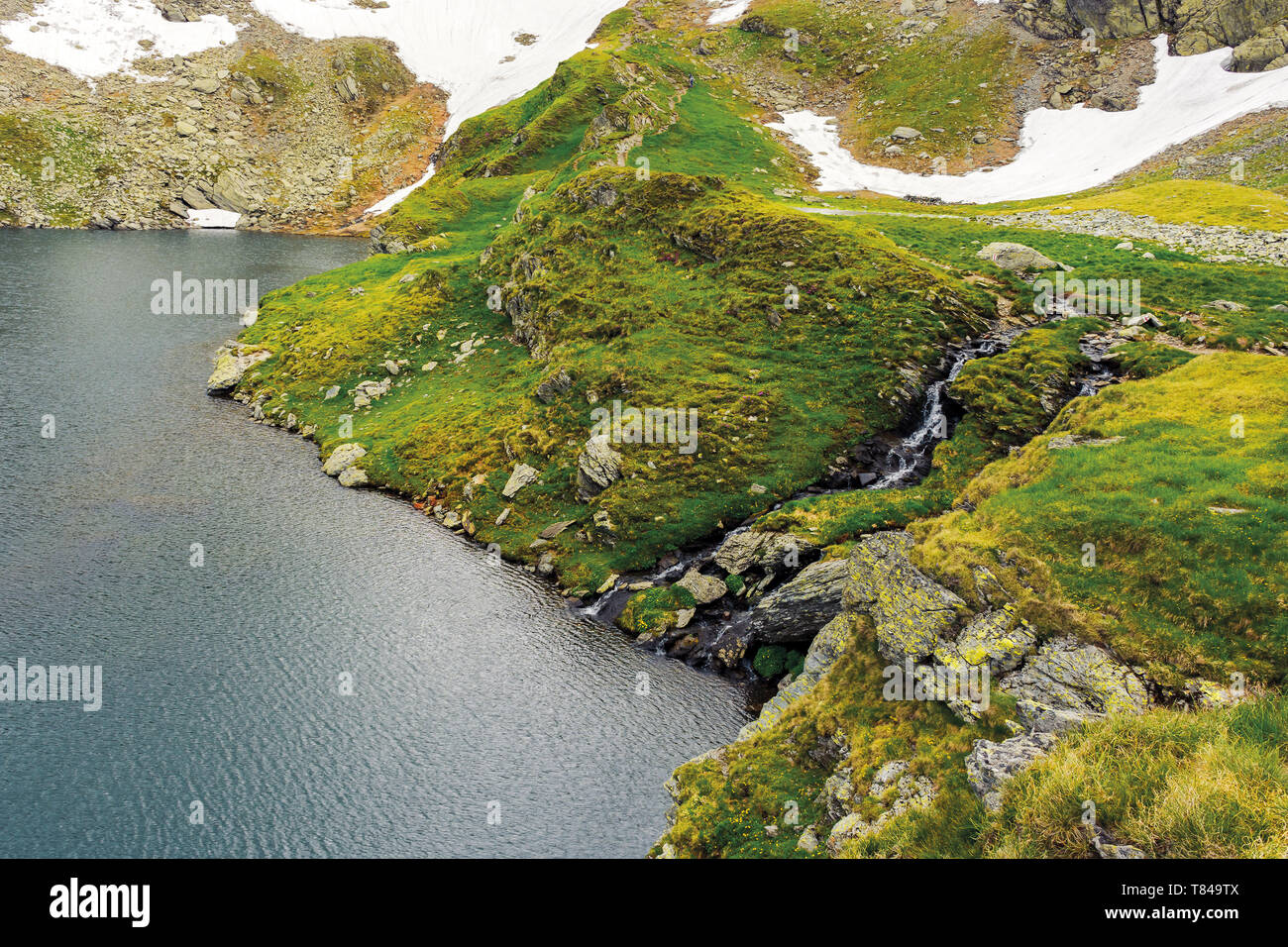 glacier mountain lake in summer. beautiful nature scenery. wonderful background with water, grass, and rocks - Stock Image