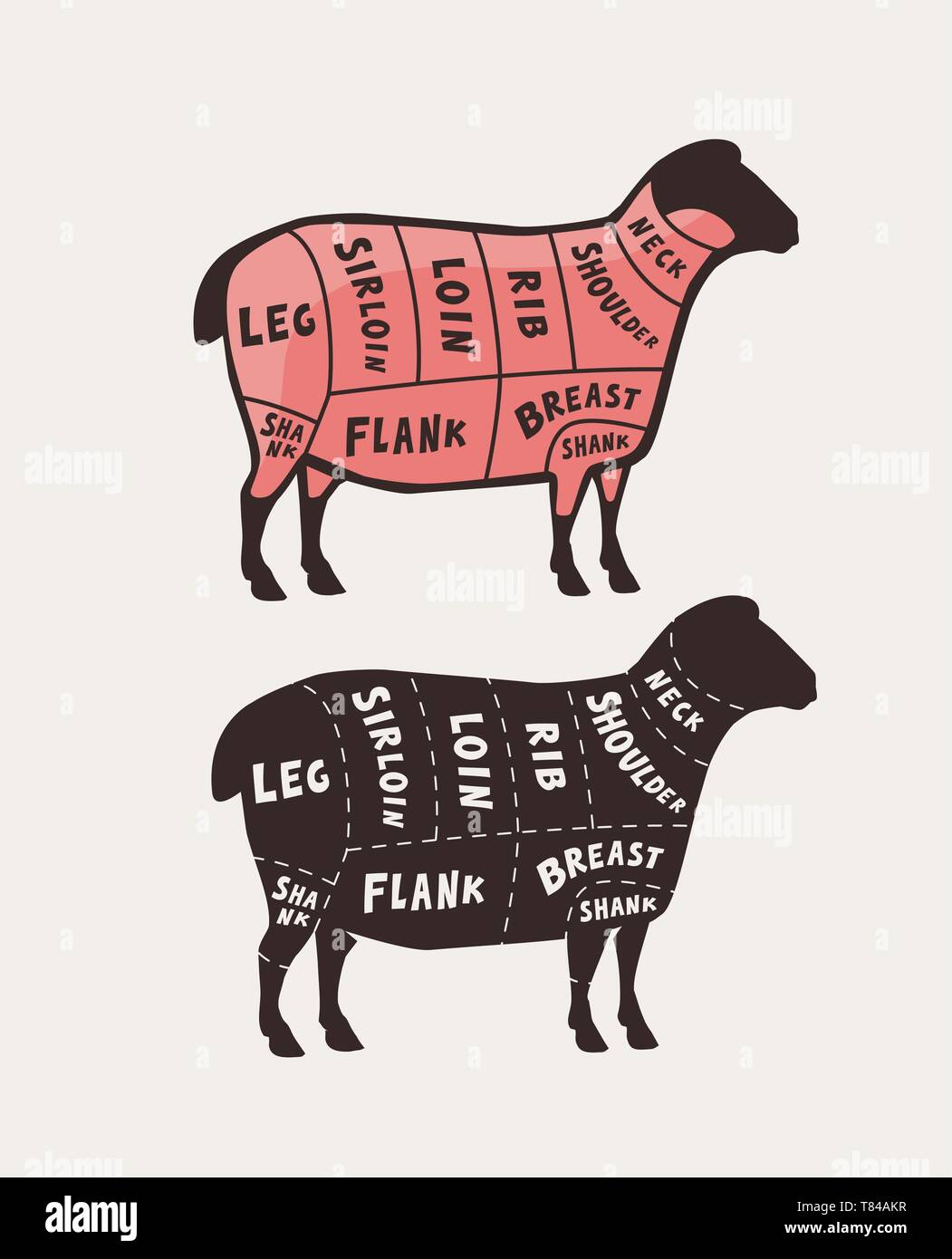 Cut of meat, lamb. Poster butcher diagram and scheme, vector illustration - Stock Image