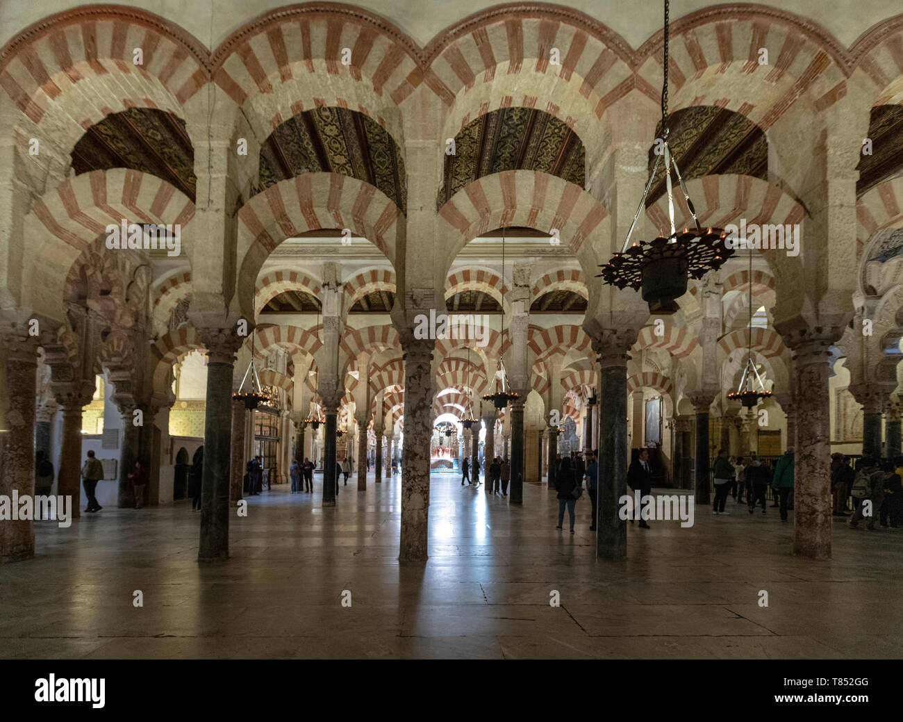 Arcaded hypostyle hall, with 856 columns of jasper, onyx, marble, granite and porphyry Mosque–Cathedral of Córdoba, Mezquita Cordoba, Andalusia, Spain - Stock Image