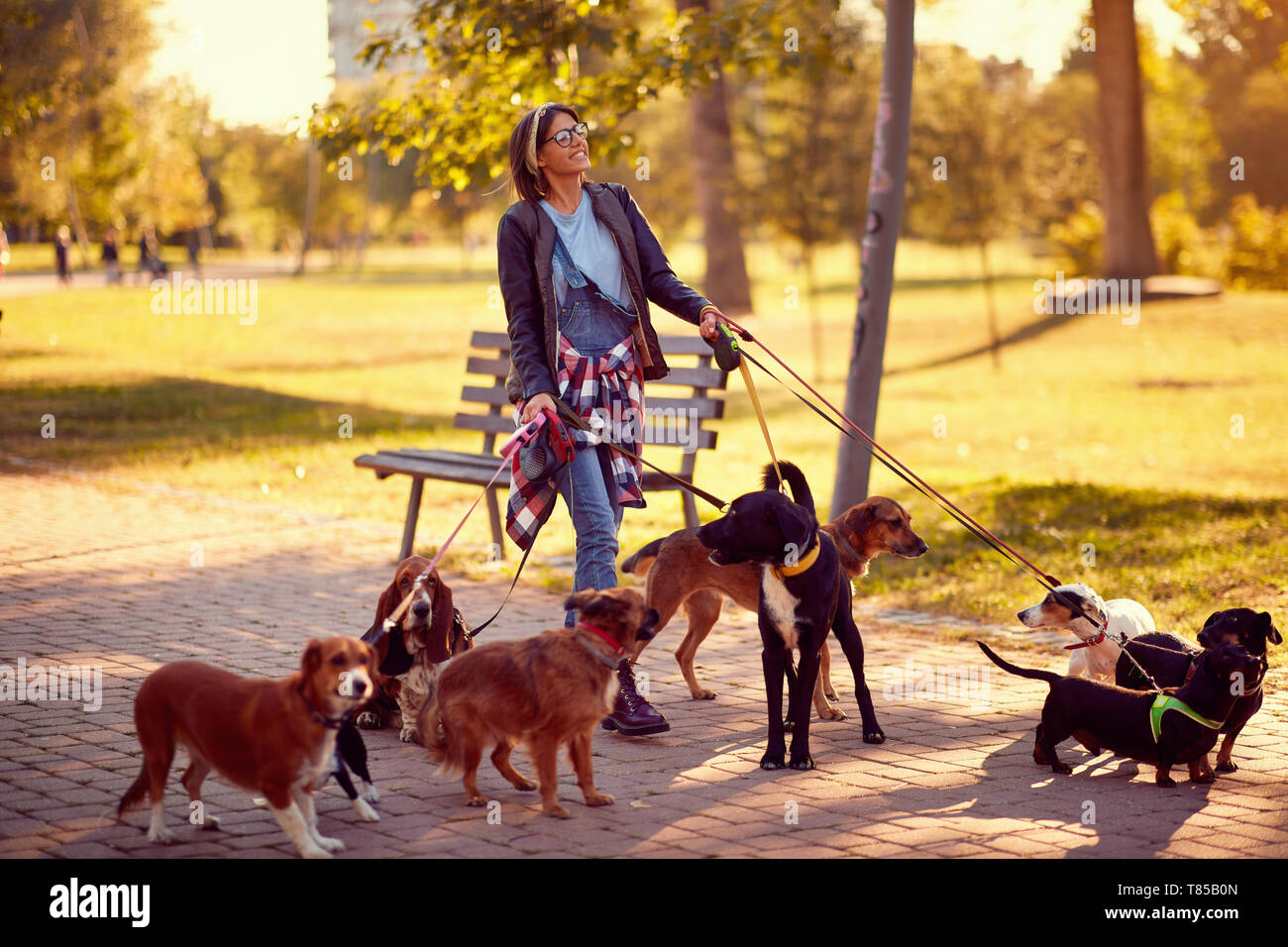 Happy Woman Dog Walker With Dogs Enjoying In Funny Walking Outdoors Stock Photo Alamy