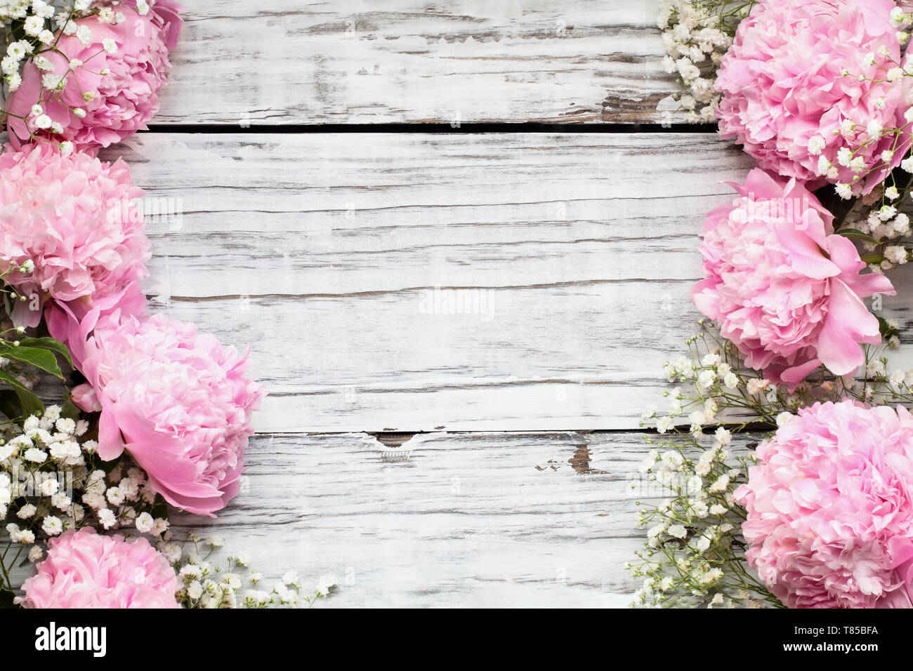 Pink Peonies And Baby S Breath Flowers Over A White Rustic Wood