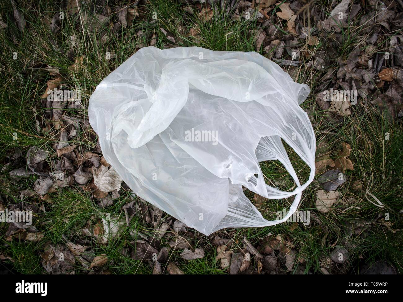 Discarded plastic bag - Stock Image