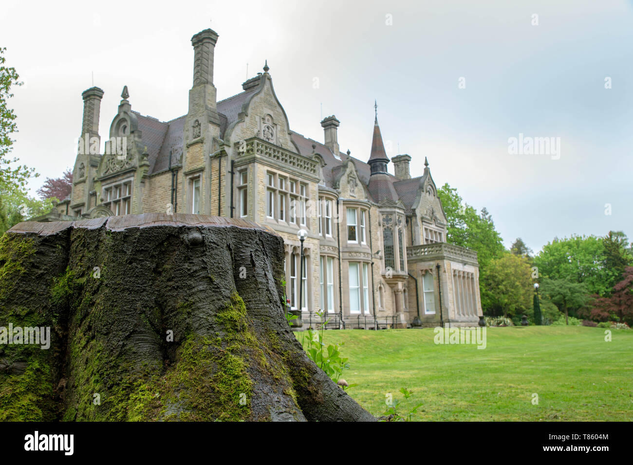 Denzell House viewed behind a tree stump within the ornate gardens, Dunham Rd, Bowdon, Trafford, Greater Manchester - Stock Image