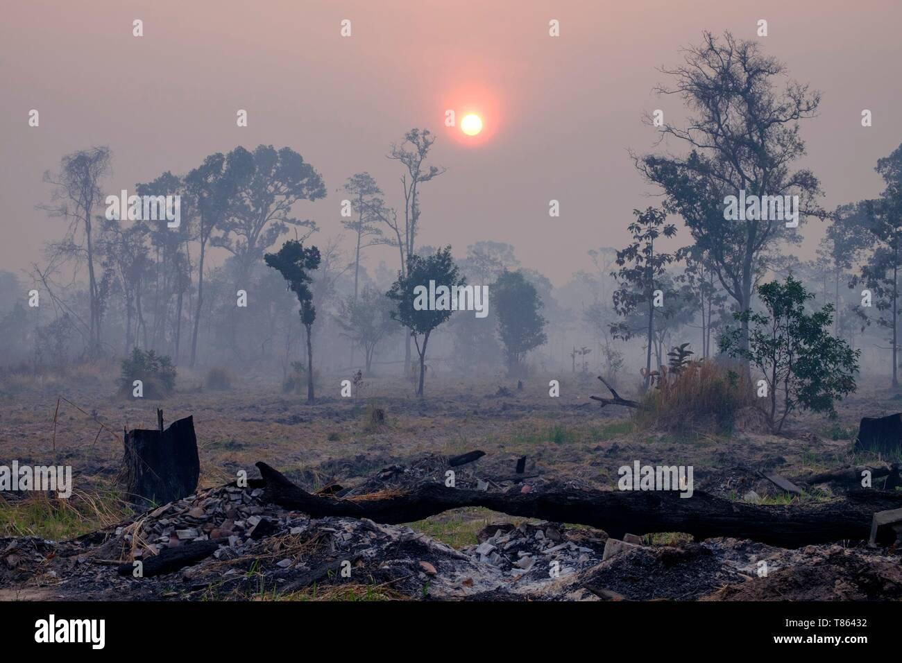 Cambodia, Preah Vihear province, near Sra Em, devastated landscape ...