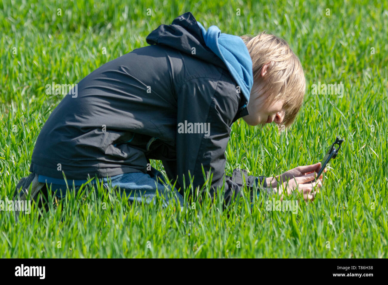 Boy using mobile phone with macro clip attachment to take pictures - Stock Image