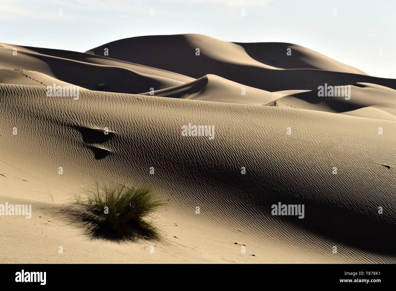 Morocco, Tafilalet region, Merzouga, erg Chebbi dunes - Stock Image