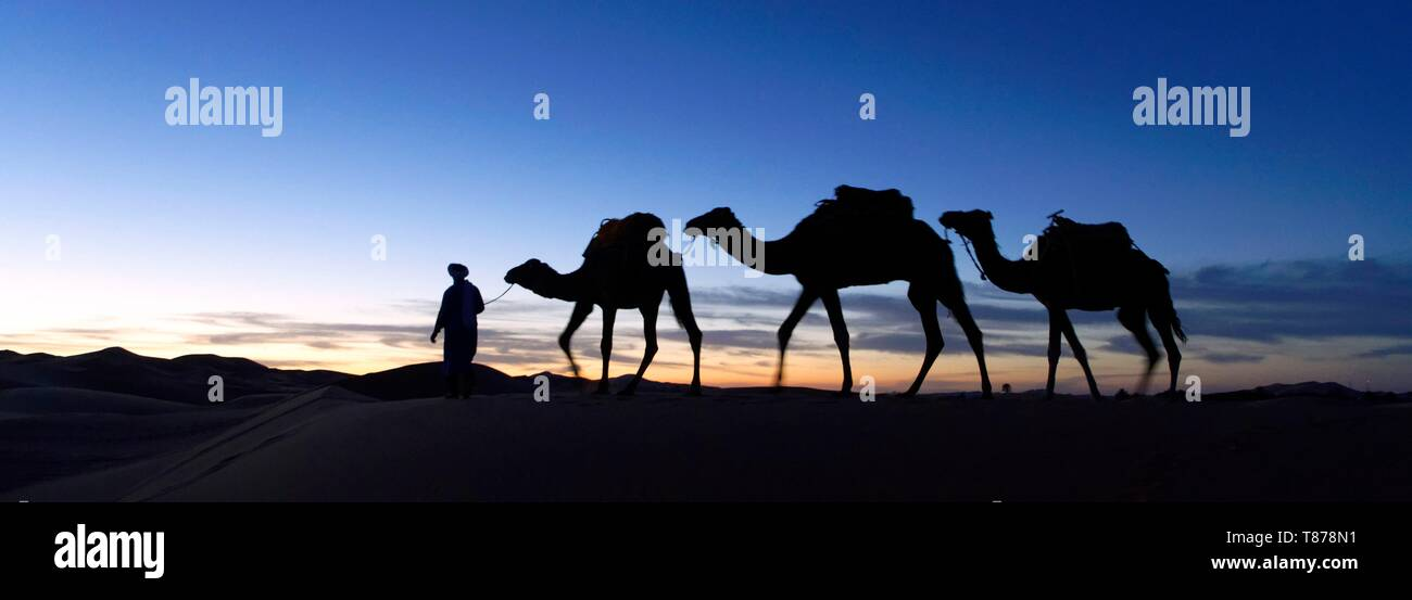 Morocco, Tafilalet region, Merzouga, erg Chebbi dunes Stock Photo