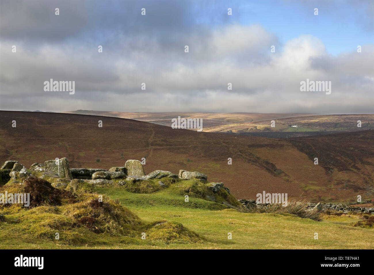 Grimspound Bronze-Age settlement, Dartmoor, Devon, UK - Stock Image