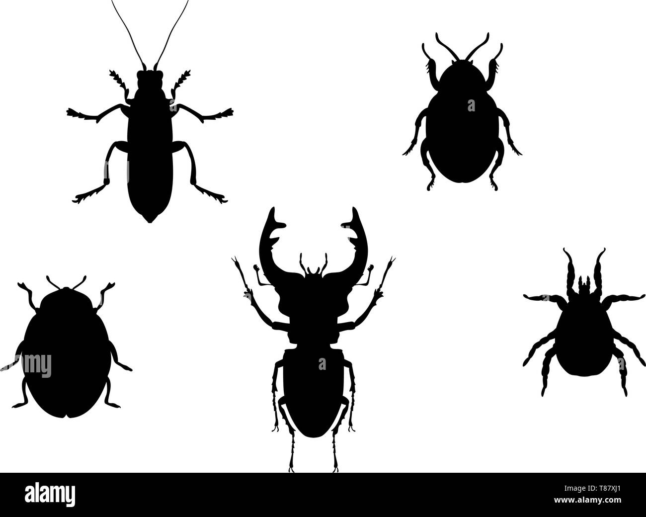 Set beetles insect black silhouette animal - Stock Vector