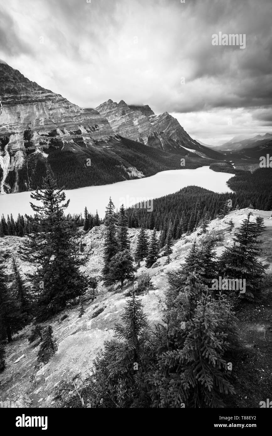 High up mountain range, above tourist tails & paths are the best places to view the stunning wolf shaped Peyto Lake & watch storm & rain clouds. - Stock Image