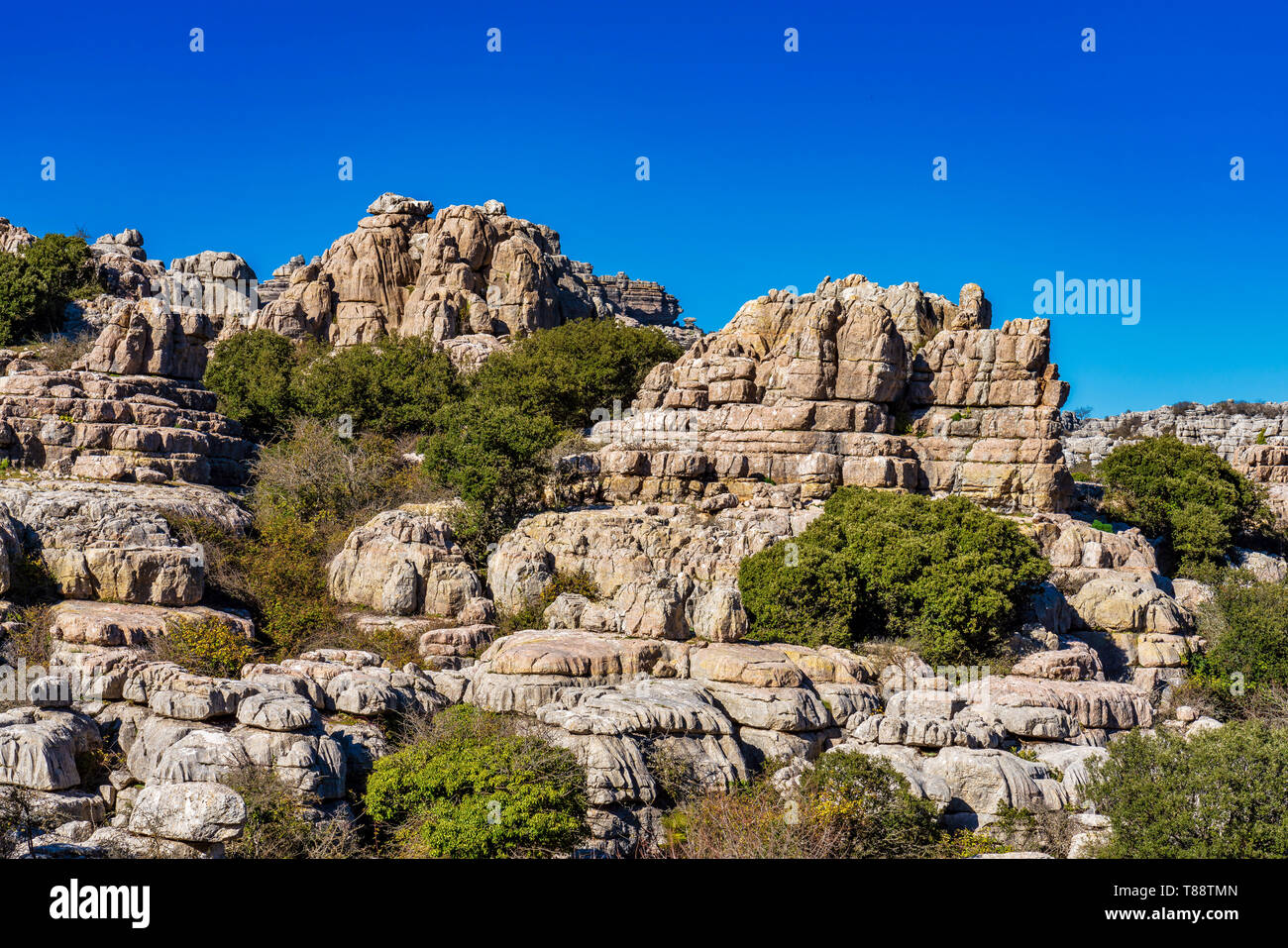 The rocks unique shape is due to erosion that occurred 150 million years ago during the Jurassic age, when the whole mountain was under sea water. Tor - Stock Image