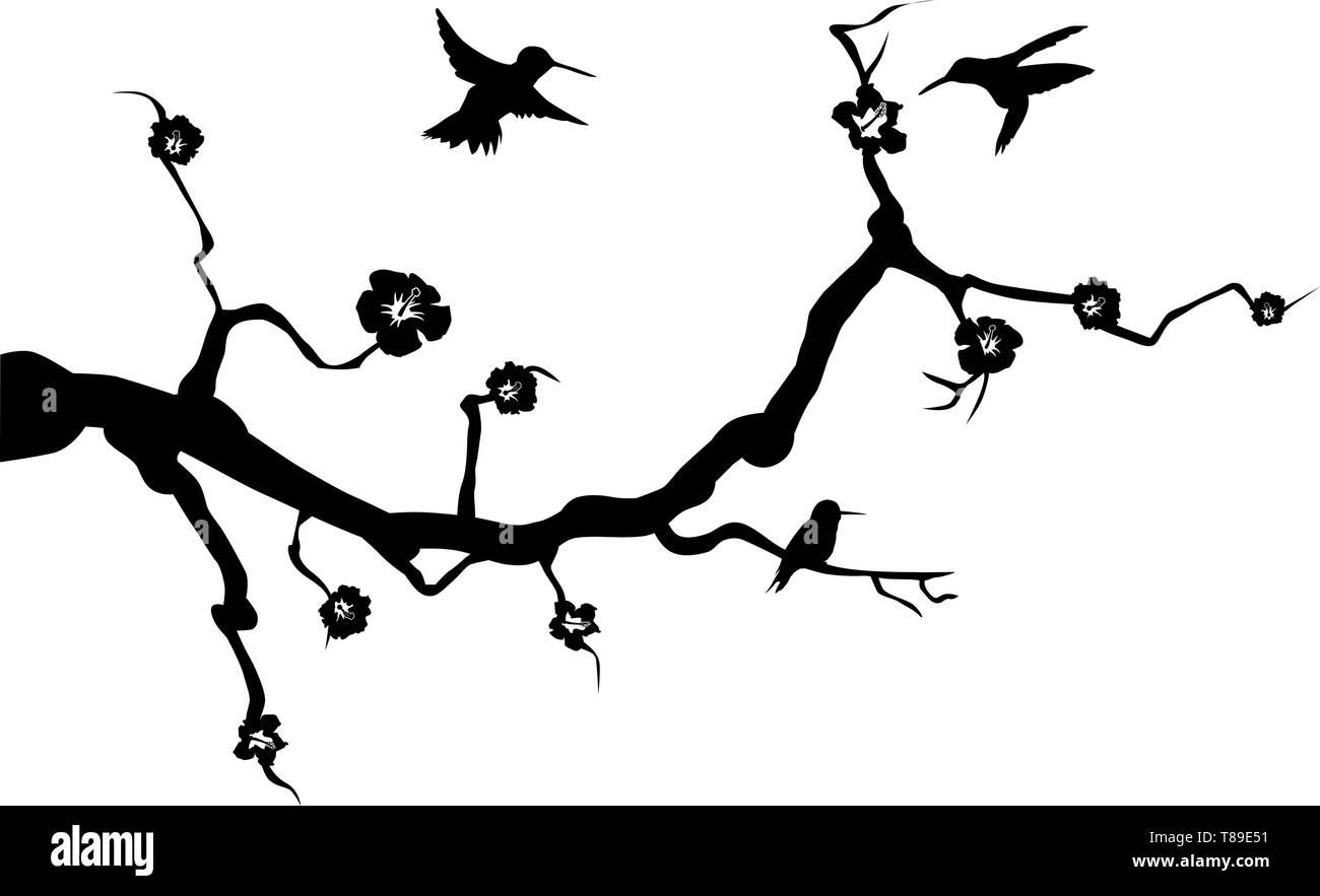 hummingbird animal wall decal wall tattoo wall sticker branch - Stock Vector